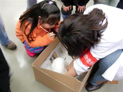 Tsukuba International School Visits the National Institute of Animal Health
