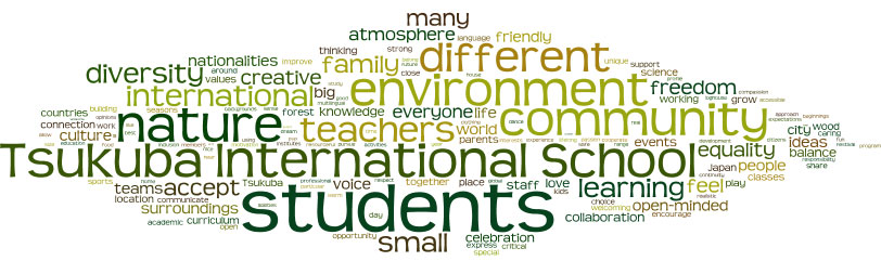 What are our values at Tsukuba International School