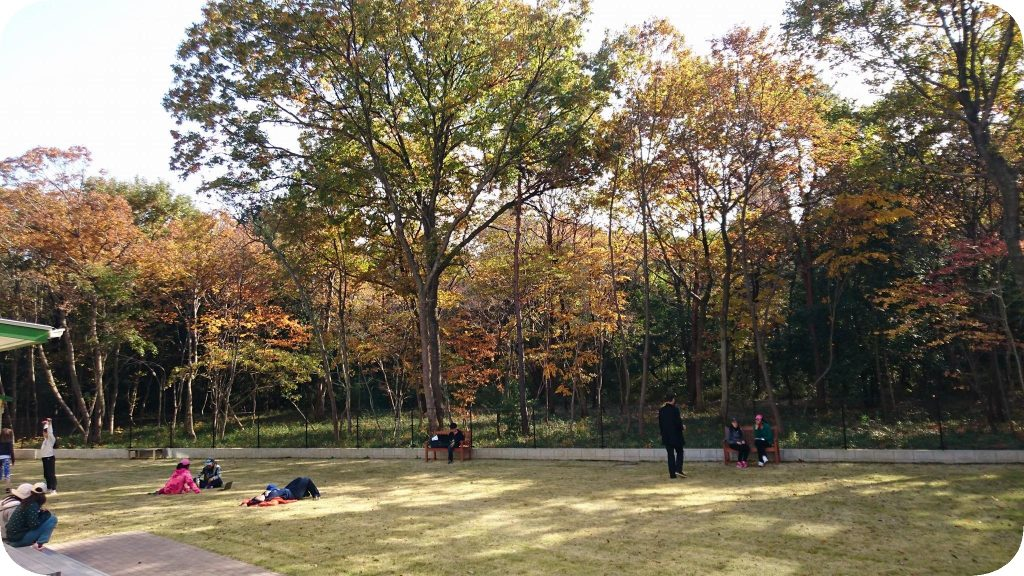 The Green at Tsukuba International School